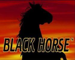 Играть в игровой автомат Black Horse